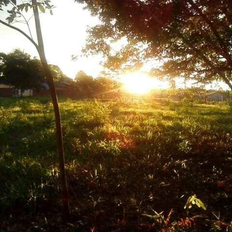 Bragança, Pará