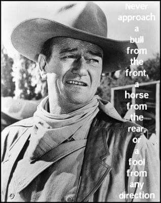 The Dukes Lays Some Wisdom On You John Wayne Quotes John Wayne Movies John Wayne