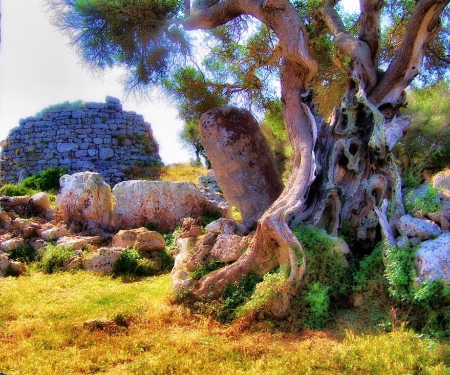 Lugar preistorico un de muchos