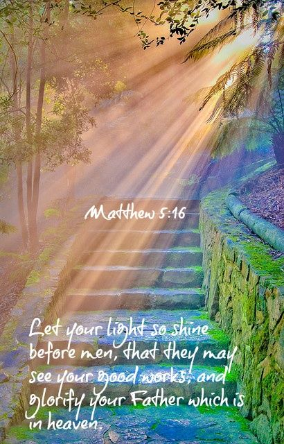 Image result for let your light so shine before others that they may see