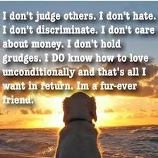 dog quote imagrs - Google Search