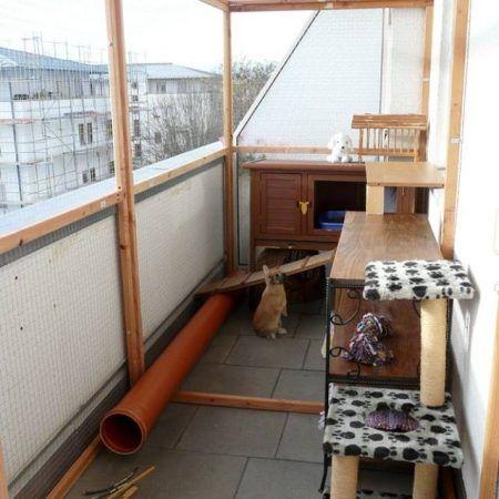 13+ Balkonhaltung Fotos Stock