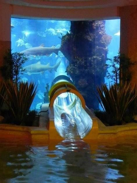 There's an aquarium with a water slide that goes through a shark tank at the Golden Nugget Hotel in Las Vegas, NV