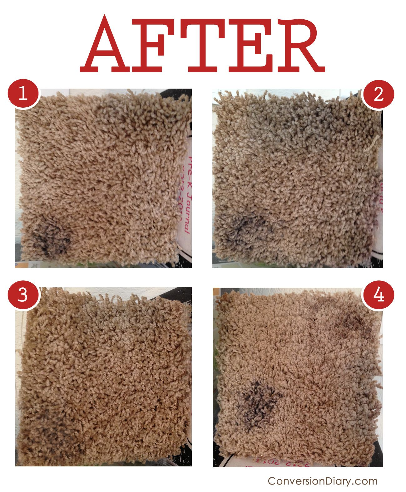 Pinterest Carpet After We Interrupt This Blog To Bring You The Ultimate