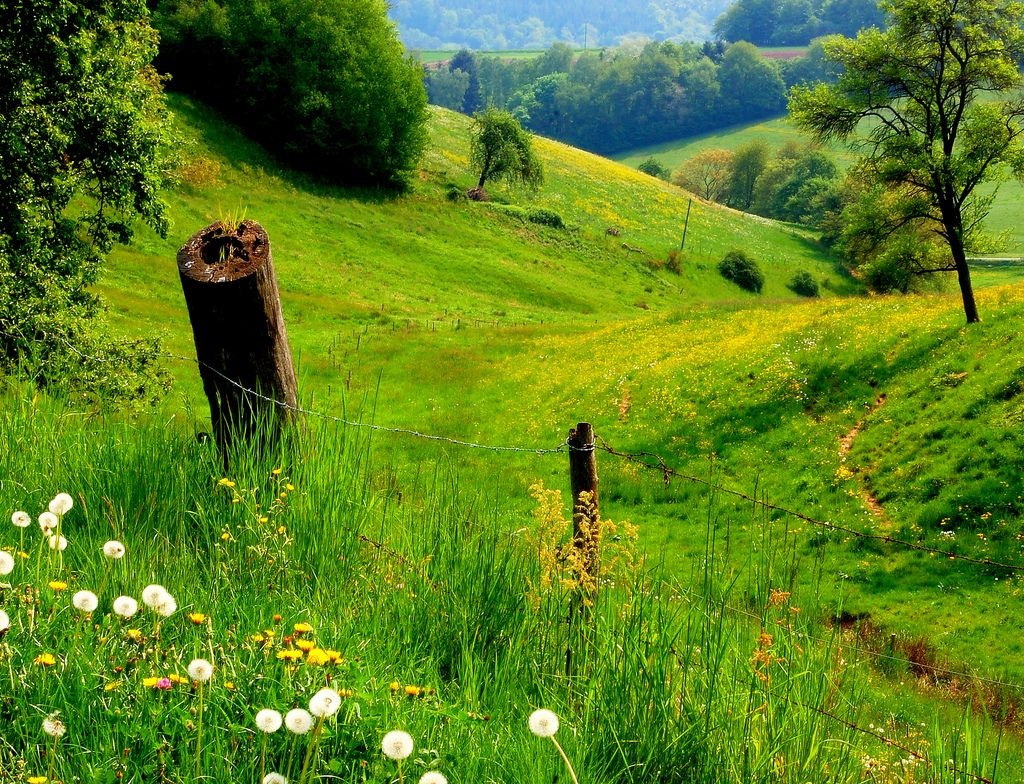 Country landscape drawing inspiration in the country beautiful places country landscape drawing inspiration sciox Images