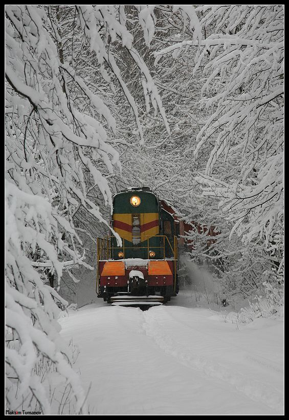 Train--wow--can barely see the tracks