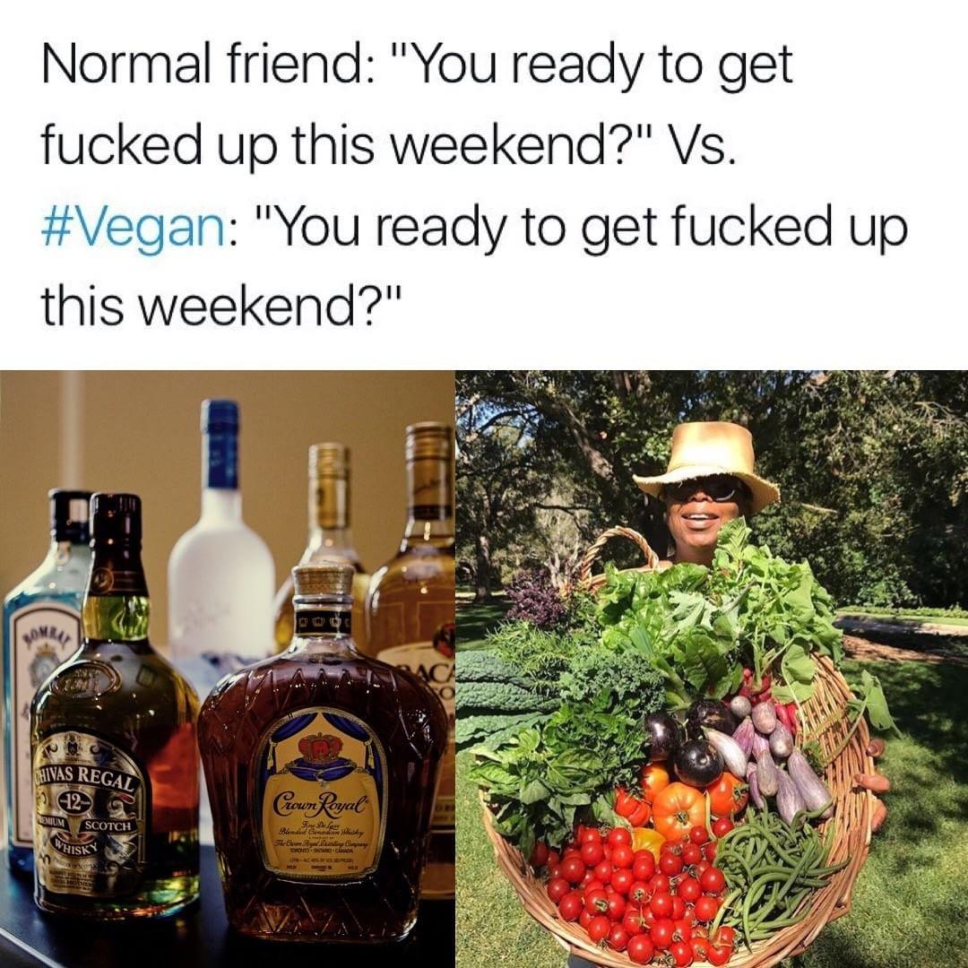 My Vegan Friends Are My Normal Friends Vegan Humor Vegetarian Humor Reasons To Go Vegan