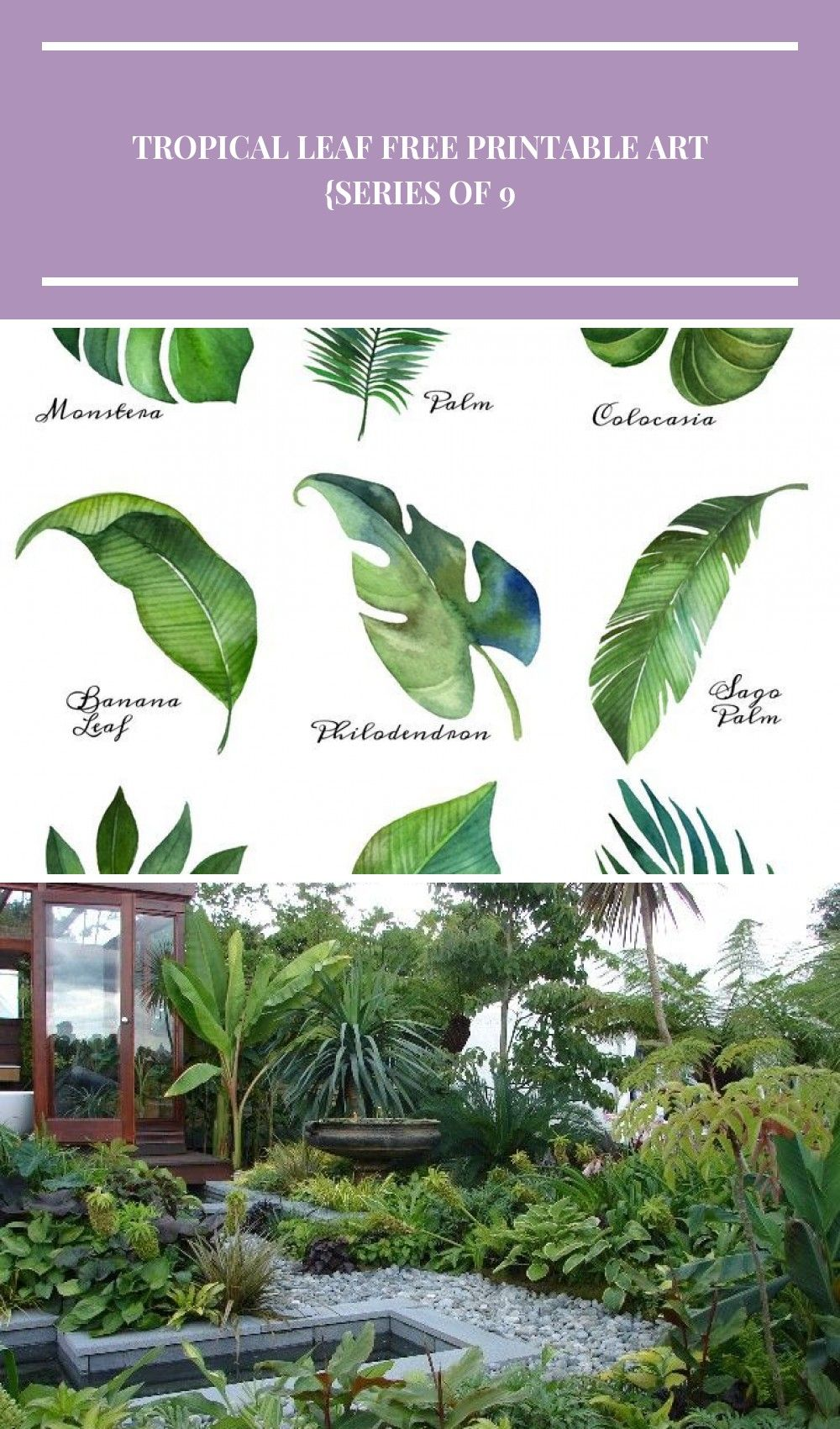 Tropical Leaf Free Printable Art Series of 9  The Happy Housie  Beautiful free summer printables with customizable options and easy to download for your summer home decor...