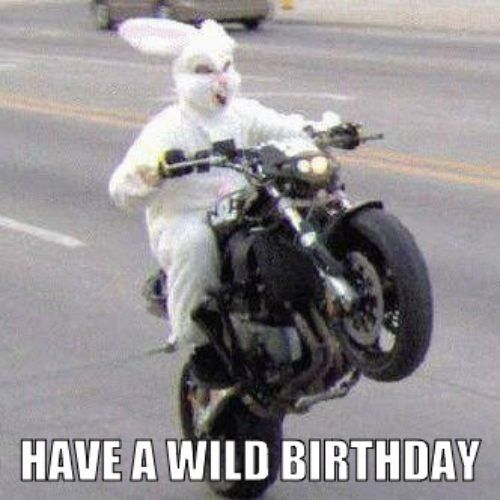 Motorcycle Birthday Meme Top 100 Original And Funny Happy Memes