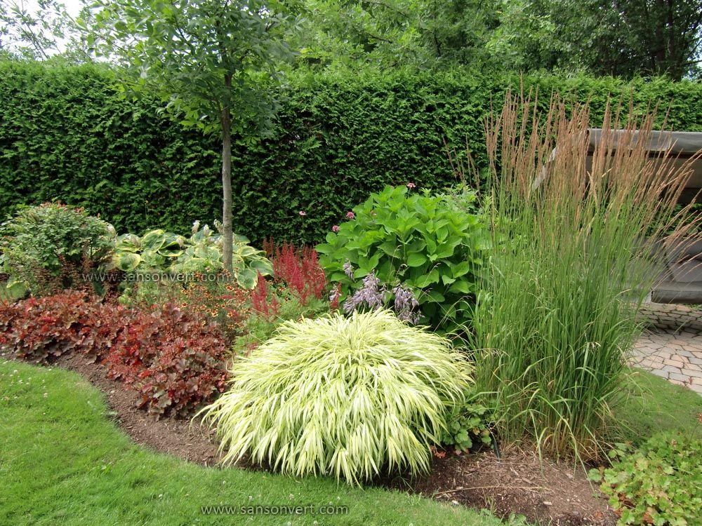 Plates-bandes | Jardin | Pinterest | Gardens, Grasses and Yards
