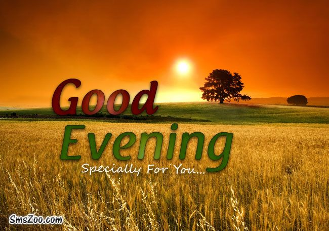 Good Evening Picture Message Ayman Alrawy Good Evening Messages
