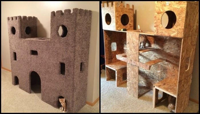 Cat Castles To Keep Your Indoor Cat Busy