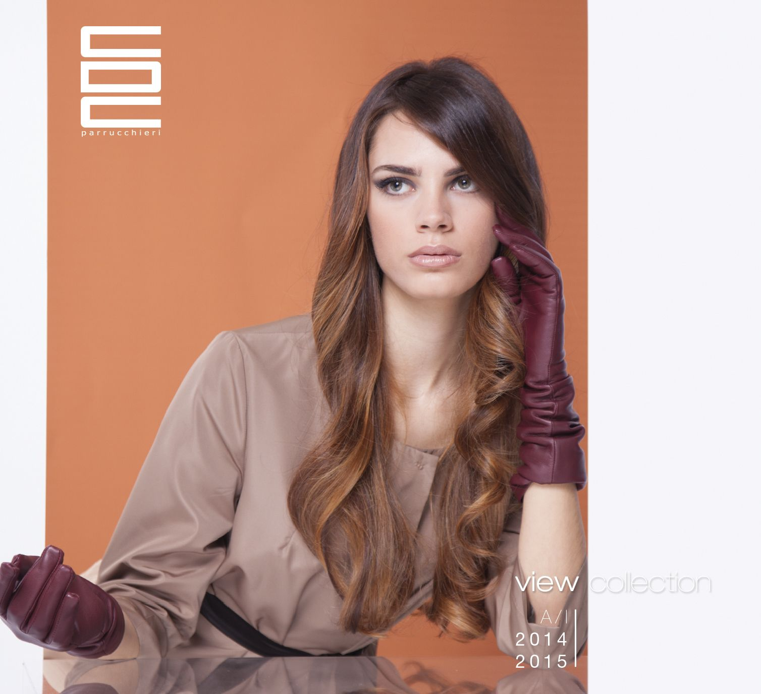FW COLLECTION 14/15 #centrodegradeconseil #cdc #cdcparrucchieri #view #collection #viewcollection #hair #color #style #degrade #hairbeauty #hairmodel #haircare #fashionhair #haircolor #hairstyle #haircreation #sfumaturechefannoladifferenza