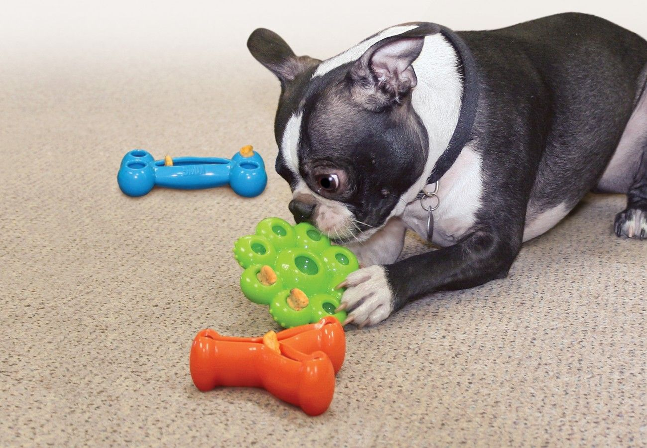 The Best Durable Dog And Cat Toys Treats From The Kong Company