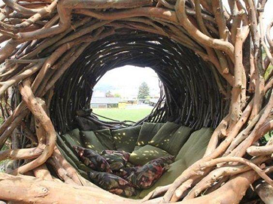 nido umano3