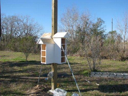 78 1000 images about birdhouses on Pinterest House plans Purple