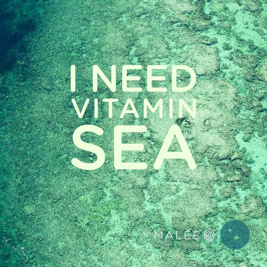 Get gorgeous glowing #beach ready skin with our award winning #Hydrating #Body Scrub rich in #skin loving #vitamins and natural oils.  #maleeinspiration #quote #wisdom #naturalskincare #beauty #inspiration #holidays #relax #power #instamood #instagood #nature #sea #wanderlust #natural