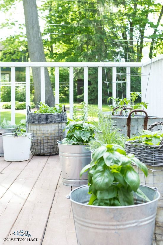 Grow Your Own Herbs With These Container Herb Garden Ideas. Easy Tips For  Getting A Big Harvest From A Small Amount Of Space.