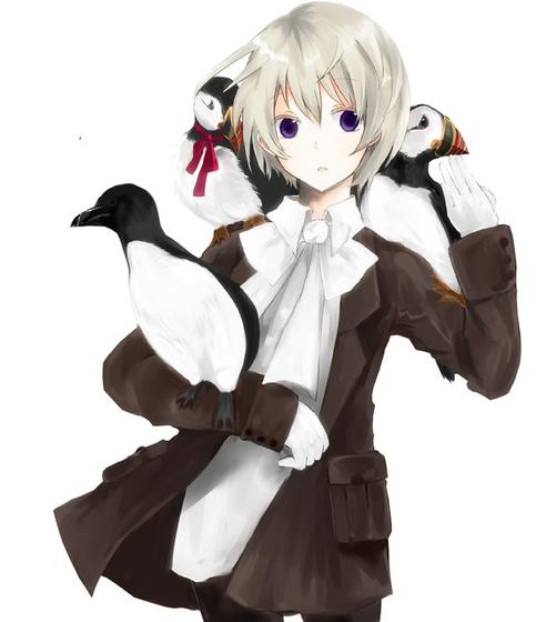 anime Render neko Google Search Dessin personnage