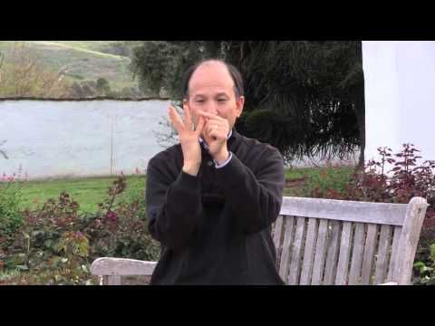 Qigong for Lowering Blood Pressure - Safe Qigong - YouTube