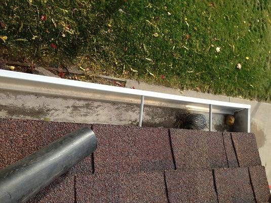 Best Way To Clean Gutters Cleaning Gutters Outdoor Decor Gutters
