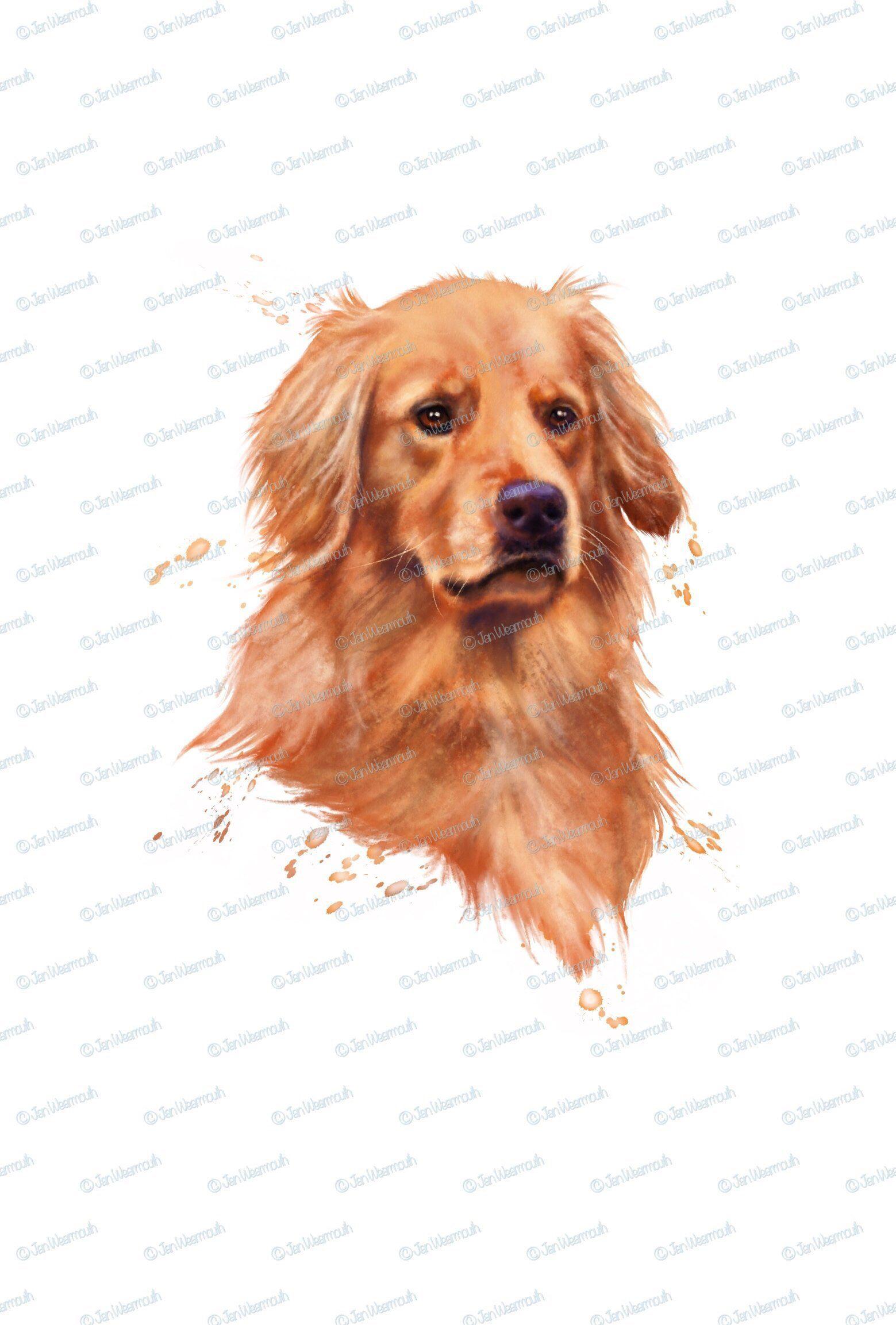 Dog Clipart Digital Download Golden Retriever Clipart Instant