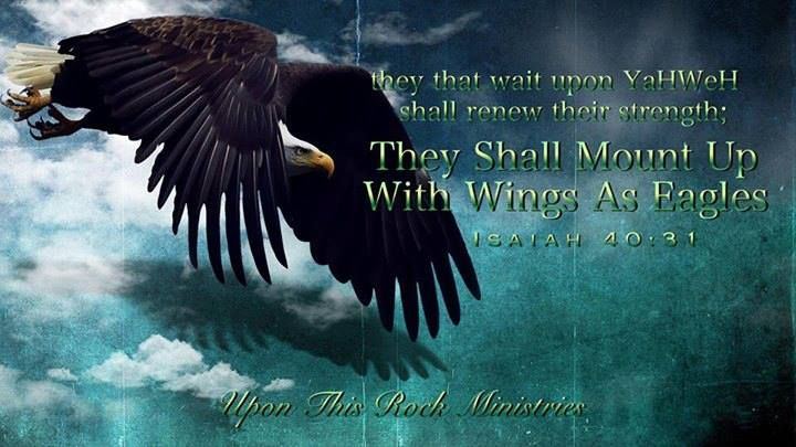 Isaiah 40:31 but they who wait for the Lord shall renew their strength;     they shall mount up with wings like eagles; they shall run and not be weary;     they shall walk and not faint.