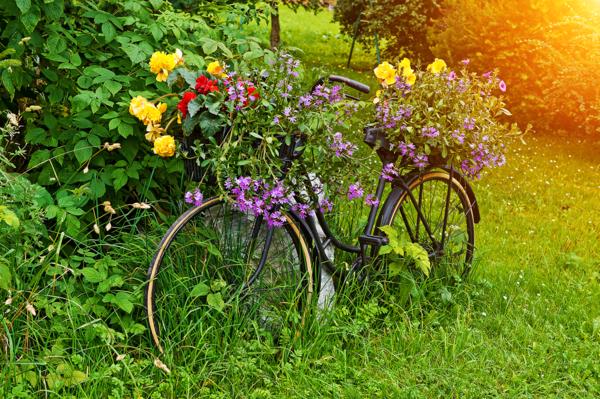 Idées de décoration de jardin pas cher | Pinterest | Summertime