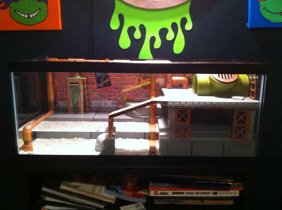 Western Bedroom Tank Toy Box Or: New Version Of Turtle Tank