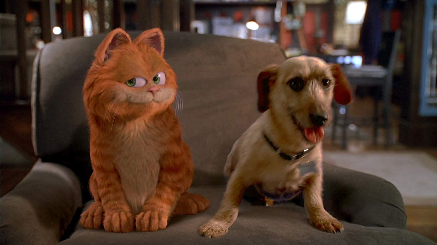 Diziger on Garfield the movie, Garfield wallpaper, Cat movie