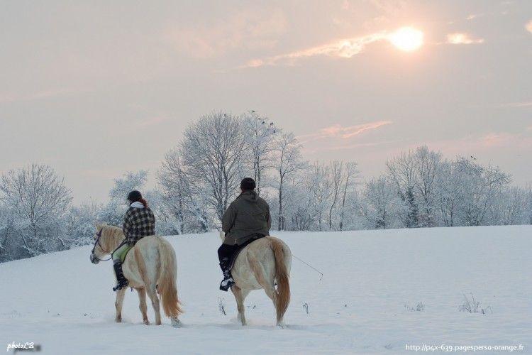 Fonds d'écran Nature Saisons - Hiver balade à cheval dans la neige