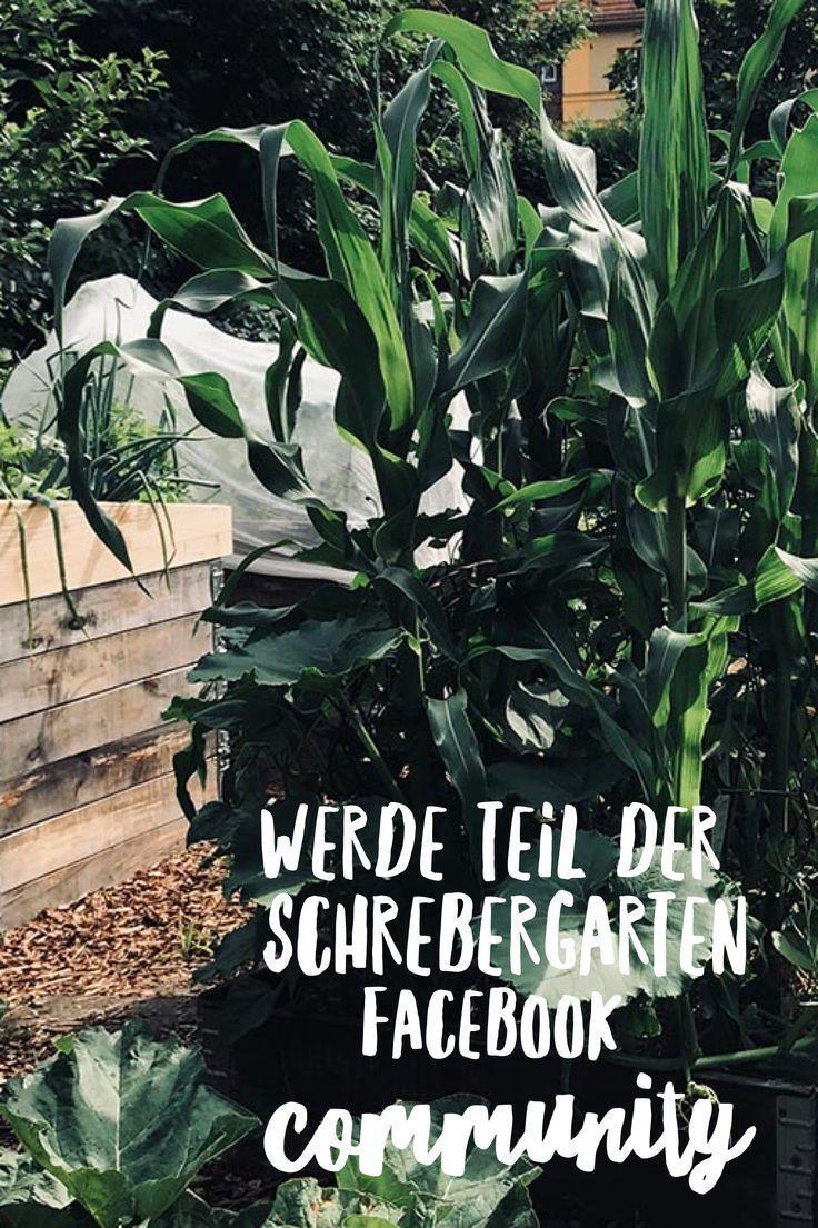 Werde Teil unserer Community und finde Inspiration und Ideen rund um Schrebergarten, Gemüsegarten, Gartenplanung, Hochbeete, Laube, Blumenliebe und viele andere Gartenthemen. Wir freuen uns auf Dich. #gemüsegartenanlegen