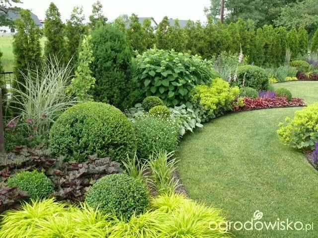 small garden but capacious page 80 garden forum gardening - Garden Design Kerry