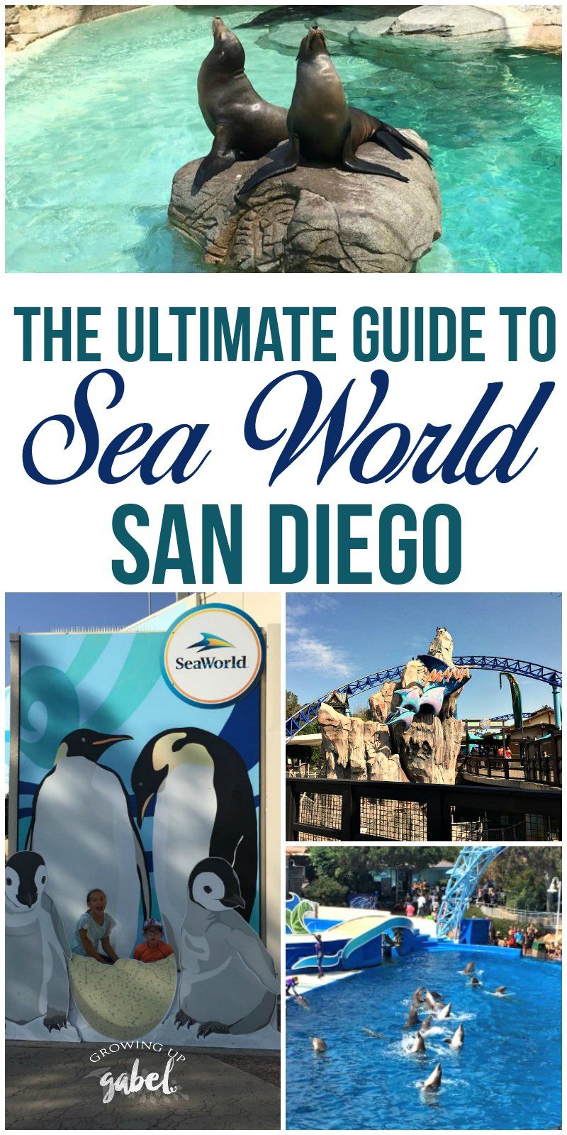 Ad Heading To Seaworld San Diego Click Here To Get All The Tips And Tricks For Rides Shows Tickets And More San Diego Travel Seaworld San Diego Sea World