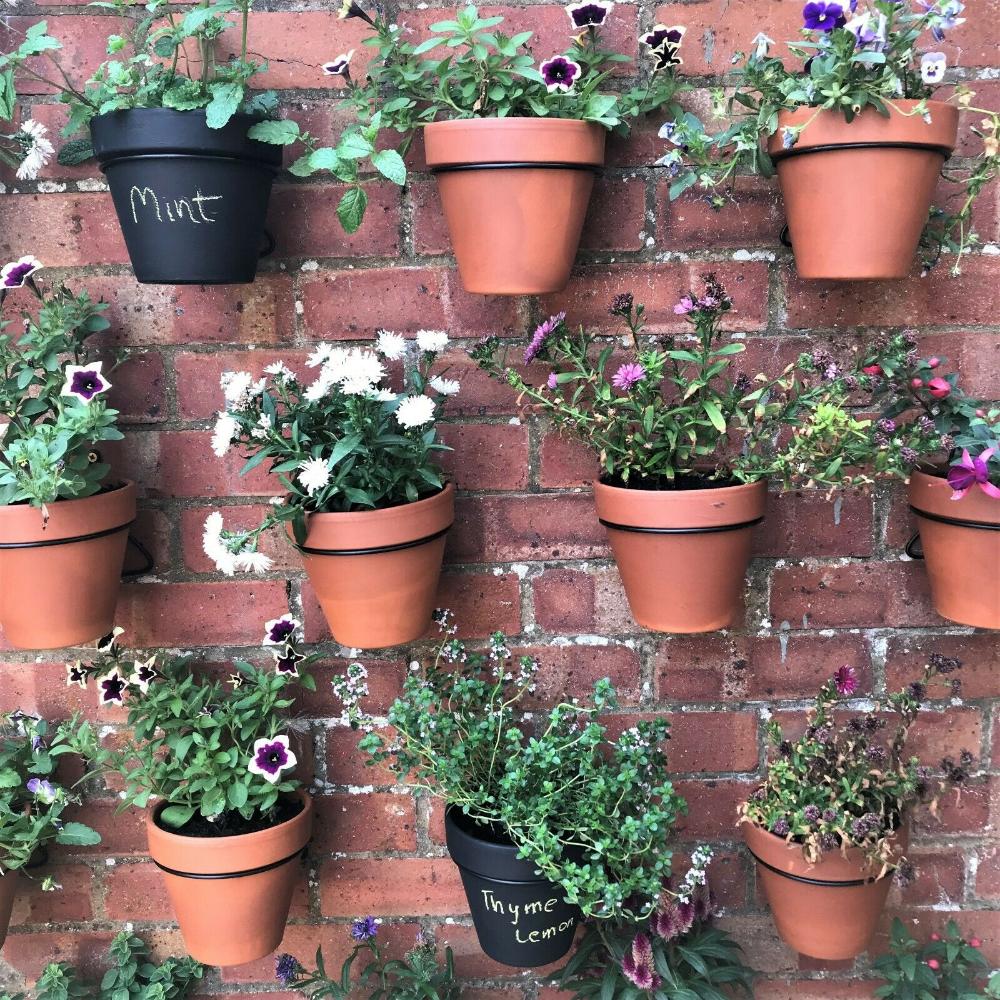 6 Pack Pot Ups Plant Pot Hangers Holders Rings Hang Flower Pots On Walls Fences Ebay In 2020 Flower Pots Outdoor Hanging Plants On Fence Hanging Flower Pots