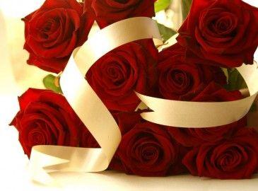Citaten Over Rozen : Bos rode rozen met wit lint rode rozen