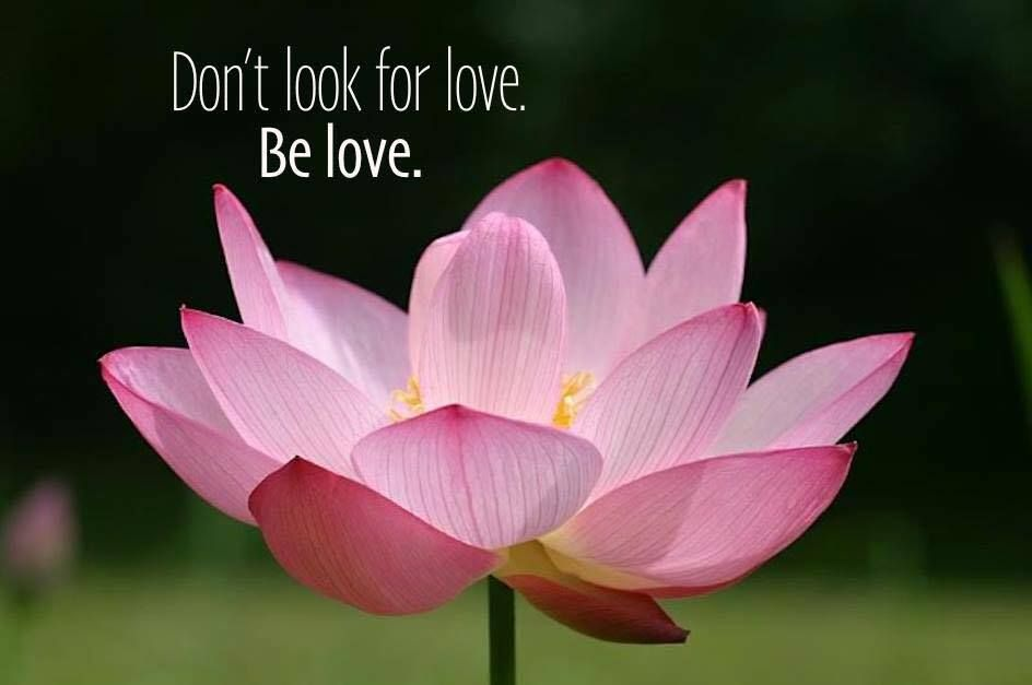 Dont Look For Love Be Love Love Relationships Marriage Quotes