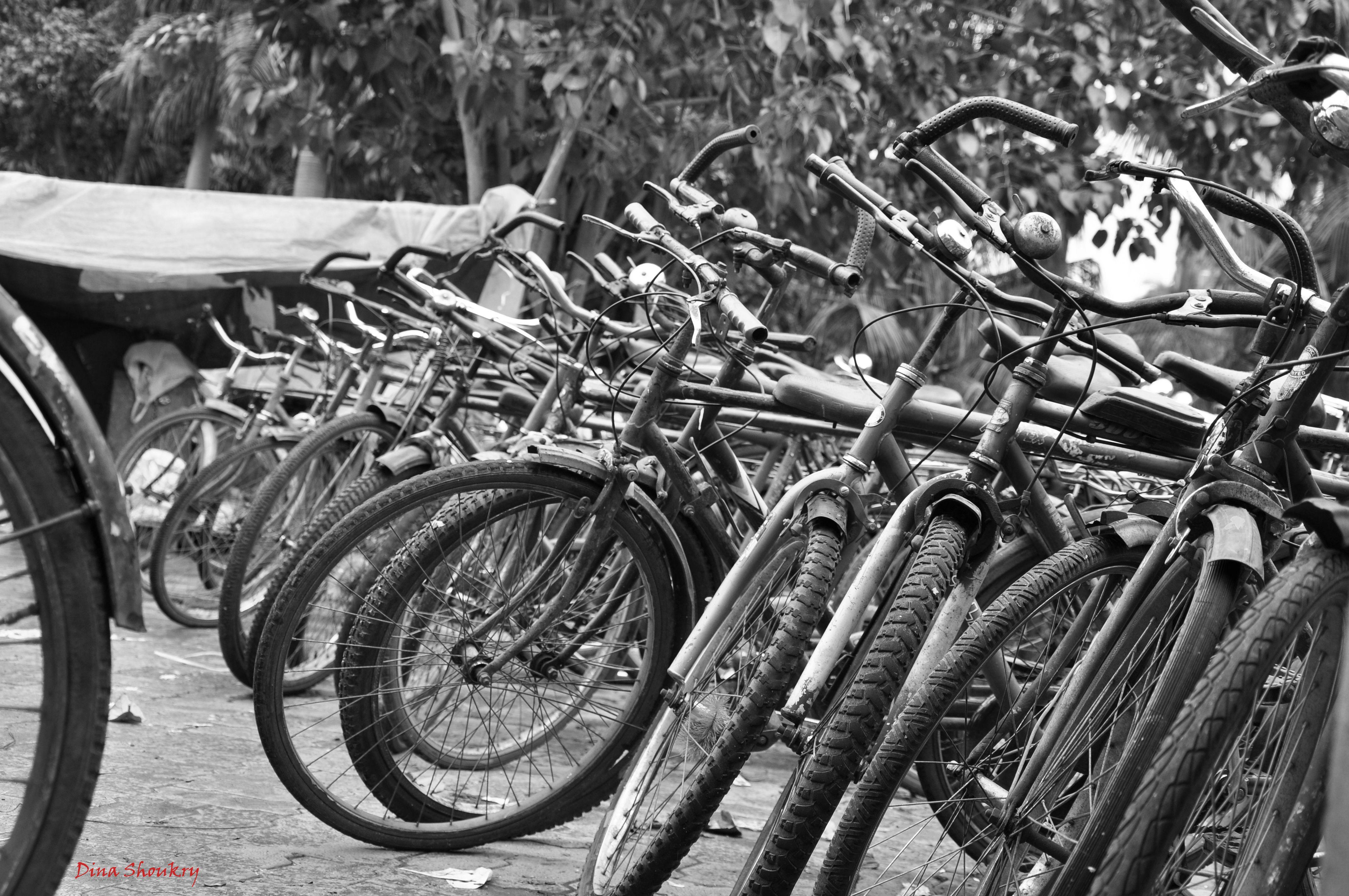 Bicycles in India Bicycle, Photo, Moped
