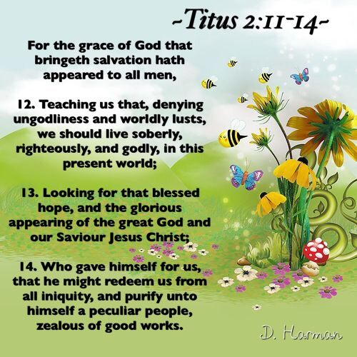 For the grace of God that bringeth salvation hath appeared to all men, 12…