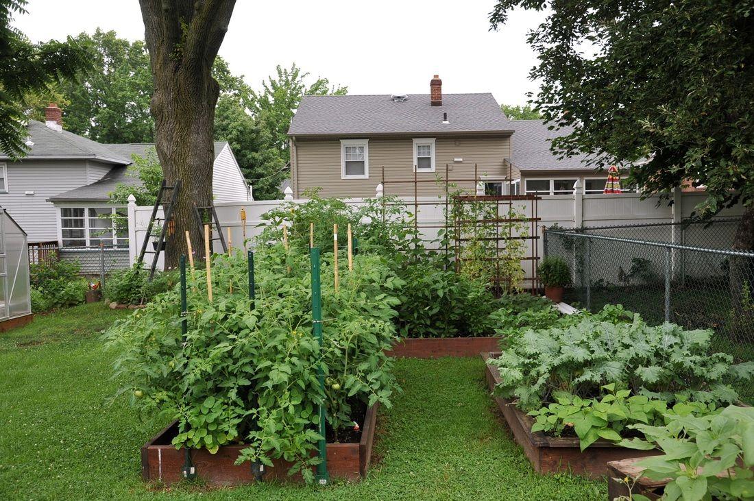 Raised Garden Boxes Florida Weave Gardenboxfarms Organic Vegetable Garden Roselle Park Nj