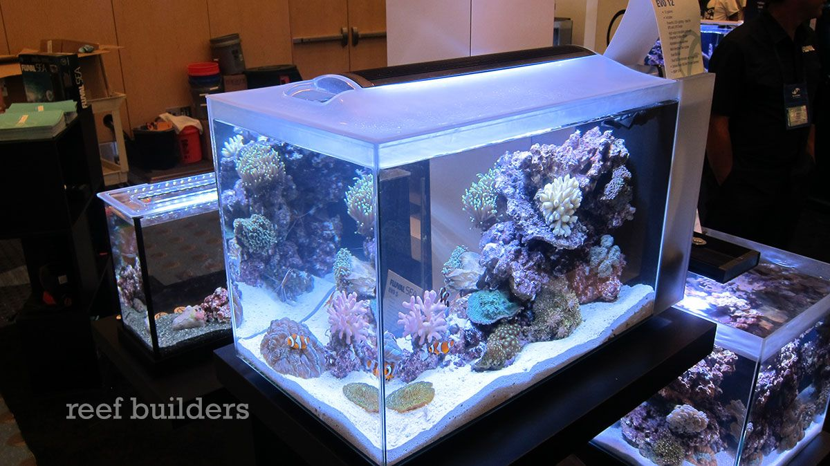 Fluval Sea Evo 12 Nano Tank Will Rock 199 Reef Builders The Reef And Saltwater Aquarium Blog In 2020 Nano Tank Saltwater Aquarium Aquarium