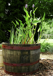 Perfect How To Make A Sustainable Water Garden Pond From A Wooden Half Barrel
