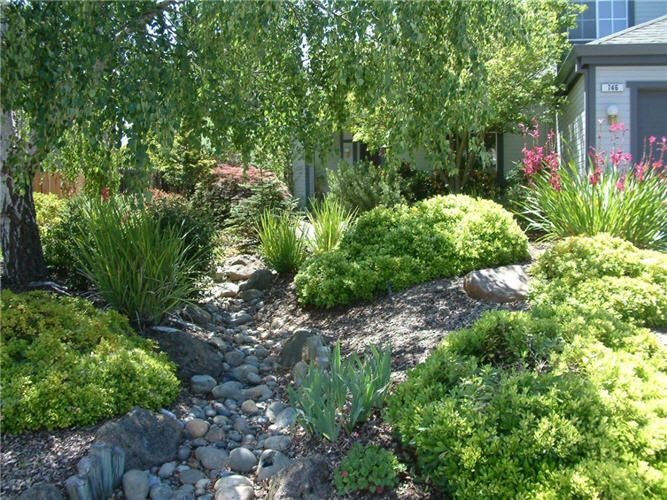Dry Creek Beds And Perennials Dry Creek Bed Landscape Design