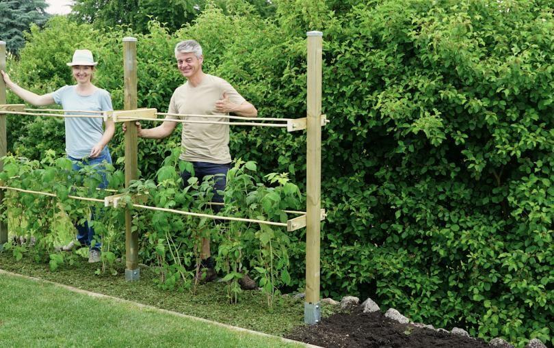 himbeerspalier bauen pflanzzeit pinterest g rten gartenideen und pflanzen. Black Bedroom Furniture Sets. Home Design Ideas