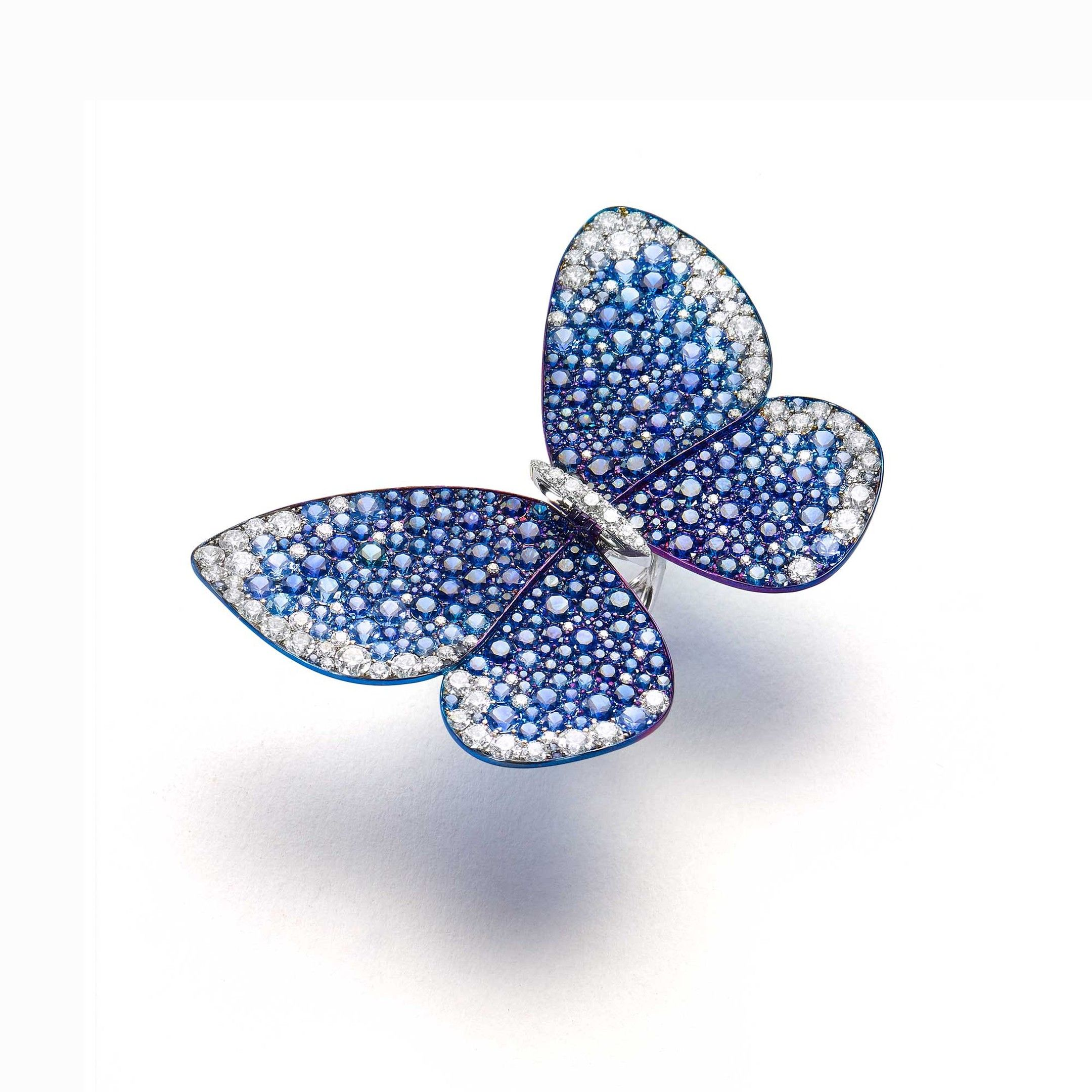 butterfly glenn in titanium fluttering sapphires set with spiro diamonds sapphire captivated gold and that ring pin has jewellery into white the