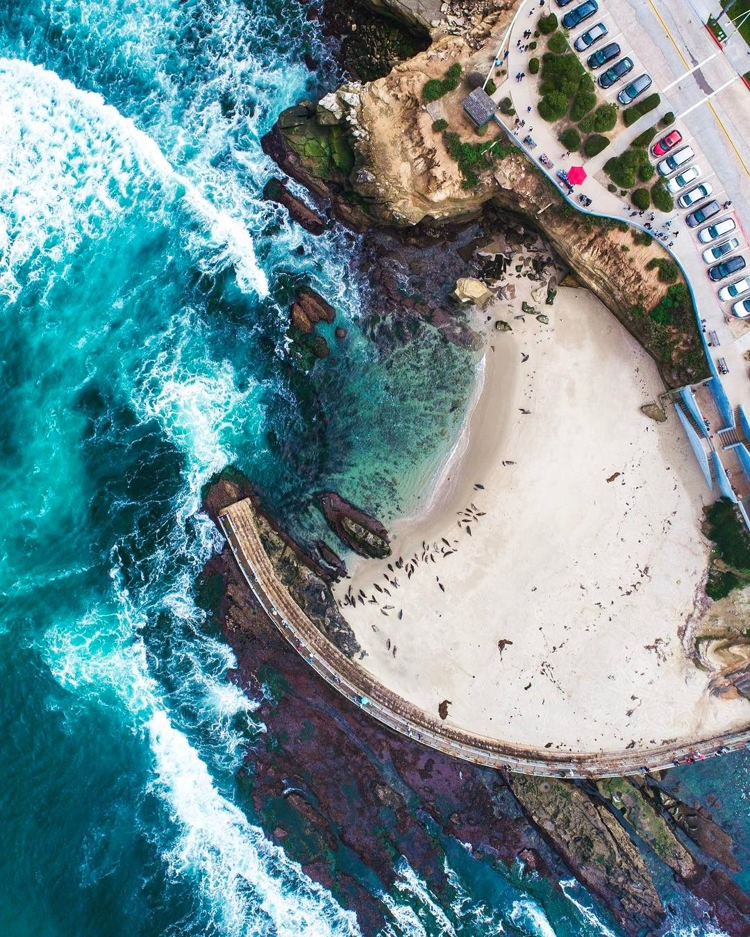 Drone Photography Cool Spot To See And Smell Some Seals Sea Lions Sandiego Credit Erdub54 Droneheroes Dronephoto Aerialphoto Aerialphotography