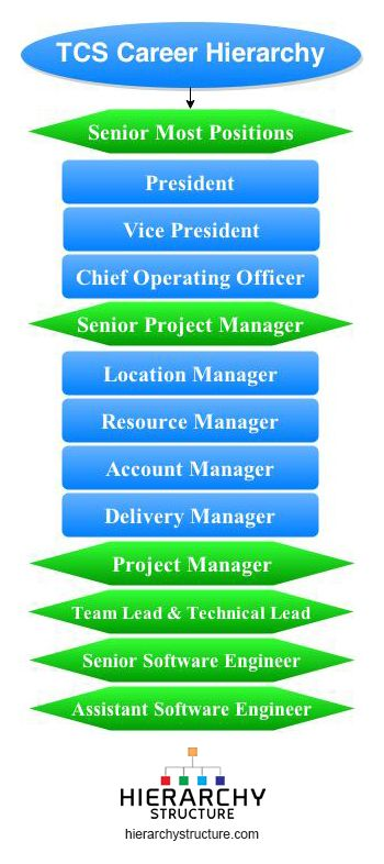 Tcs Career Hierarchy Hierarchy Career