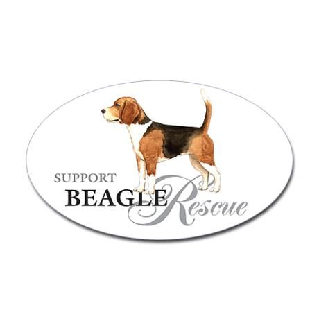 Beagle Rescue Sticker Sticker Oval Beagle Rescue Oval Sticker By