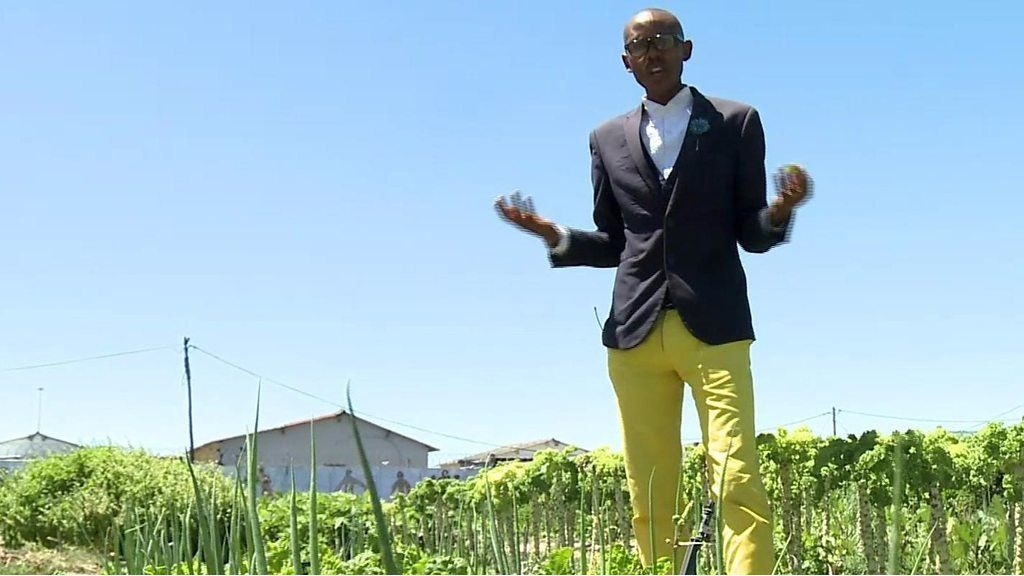 It's miraculous, says South Africa's spinach king - BBC News