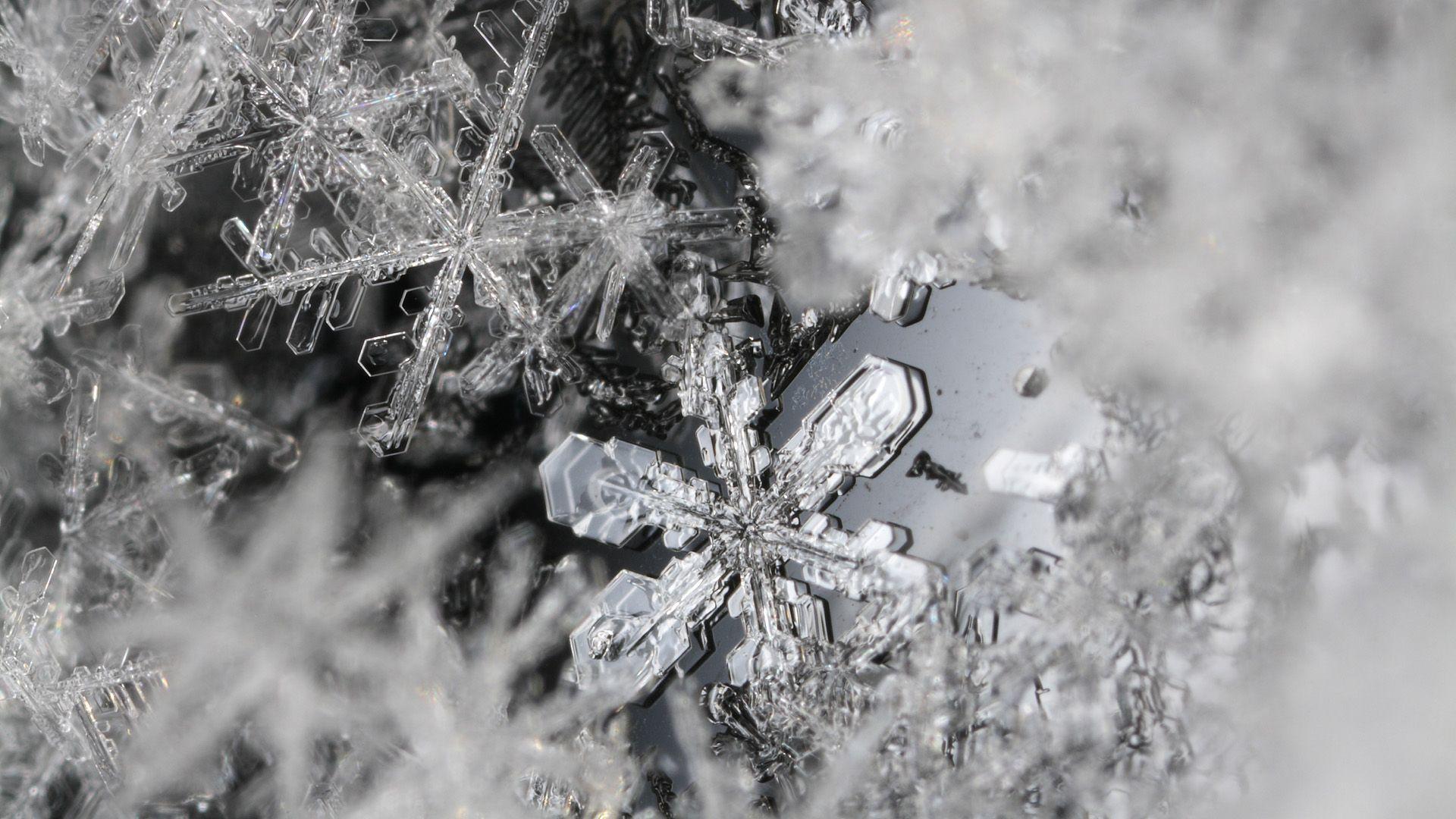 Snowflake Desktop Wallpapers - Wallpaper Cave |Real Snowflakes Background